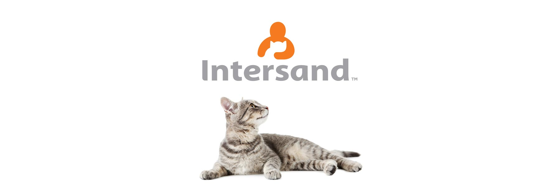 Intersand-portfolio header